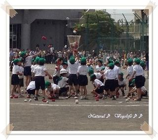 2013小学校運動会.jpg