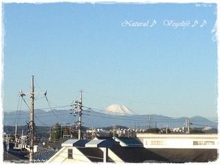 初冠雪? 2012-10-24.jpg