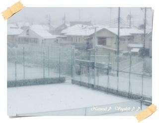 雪2012-02-29.jpg